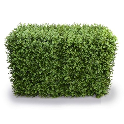 DELUXE PORTABLE BUXUS HEDGES UV RESISTANT 100cm LONG x 55cm HIGH UV