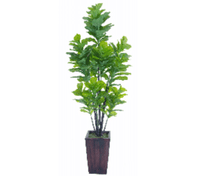 Quality Artificial Fiddle Fig