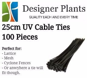 Installation Cable Ties for Green Wall