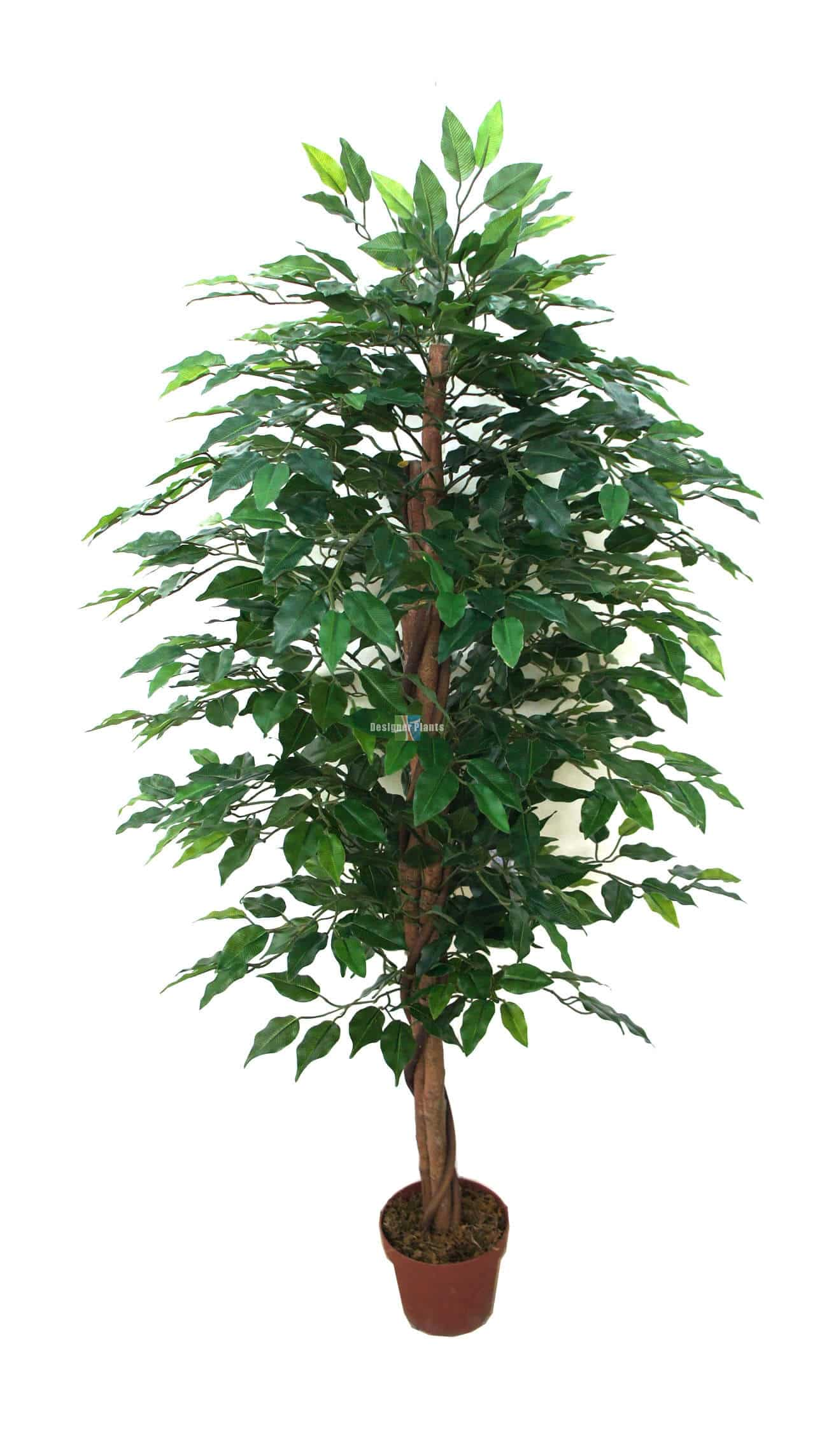 fake ficus tree artificial bushy ficus tree 180cm faux ficus tree 3659