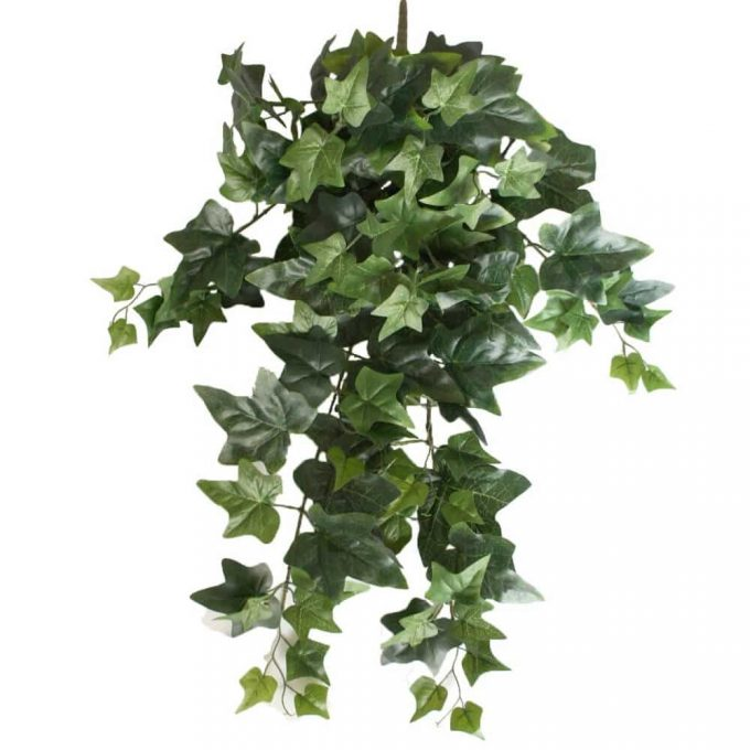 artificial hanging ivy bush