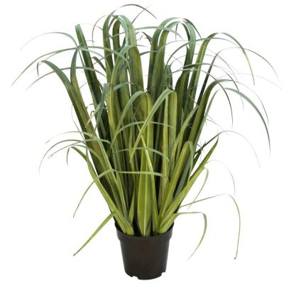 fake artificial dense grass plant