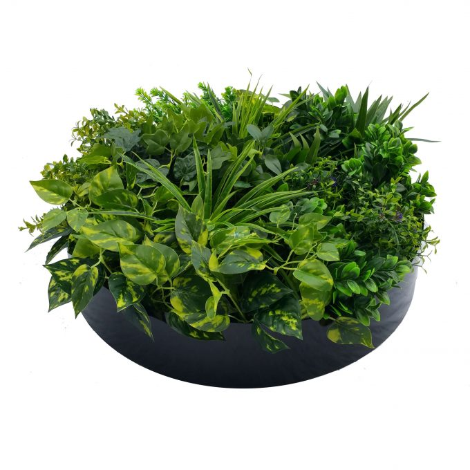 Stunning 60cm black artificial green wall disc