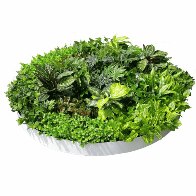 Dense Green Sensation White Disk 150cm