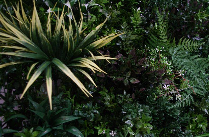 Green Forest Vertical Garden Green Wall