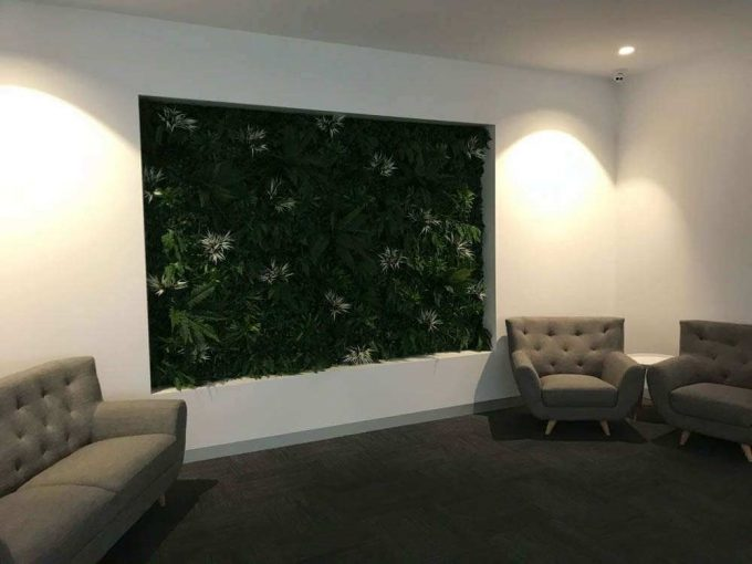 Artificial vertical garden / green wall installed in a living room