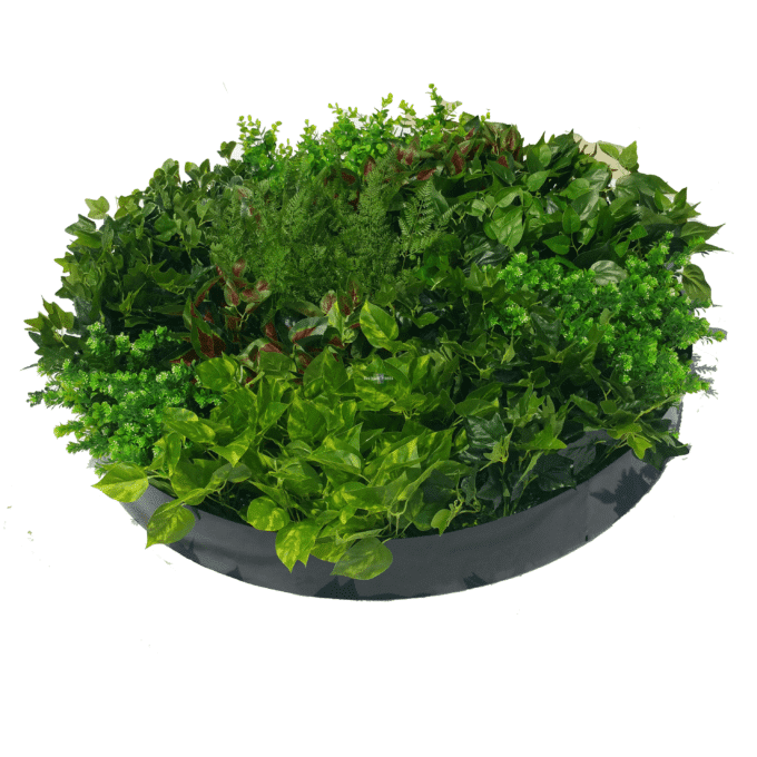 Mixed Ivy and Fern Disk Black 100cm