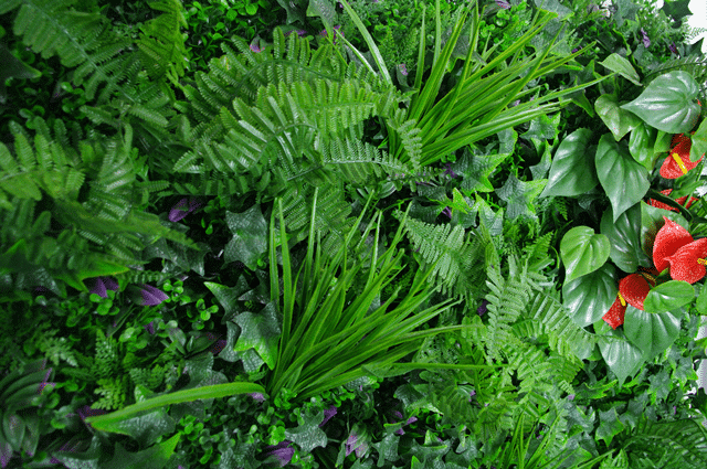 Mixed Jungle Vertical Garden / Green Wall UV Resistant SAMPLE
