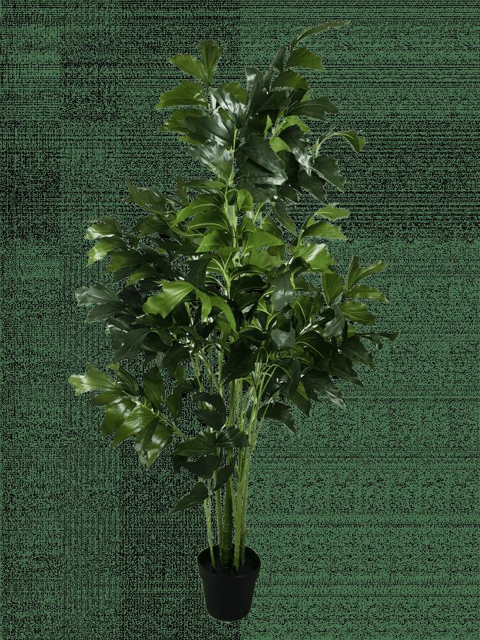 Fishtail Artificial Plant Tree