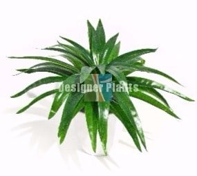 Artificial Aloe Vera Stem