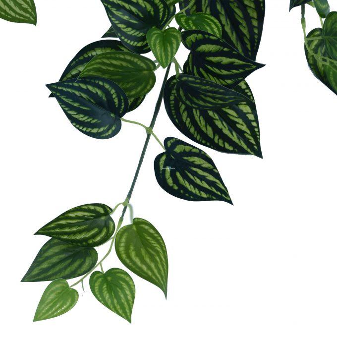 Fake Plant Philodendron Stem