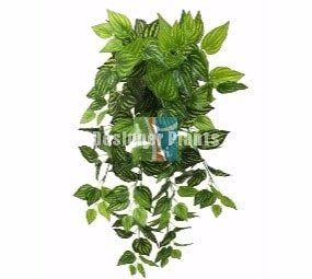 Mixed Philodendron Bush - Artificial