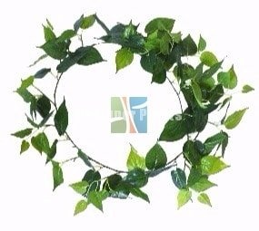 Philodendron 190cm Garland