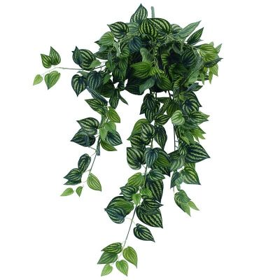 fake hanging mixed philodendron bush (1)