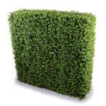 Fake Boxwood Free Standing Hedge
