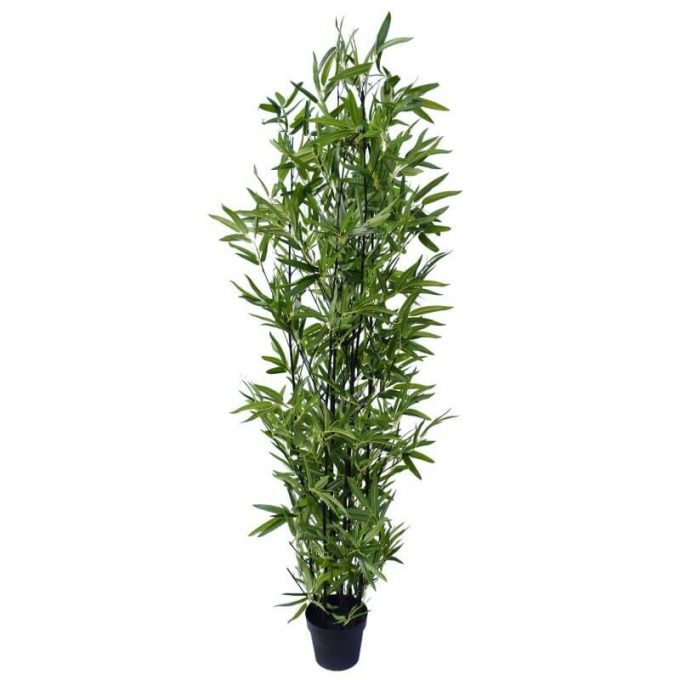 160cm real touch fake black bamboo (1)