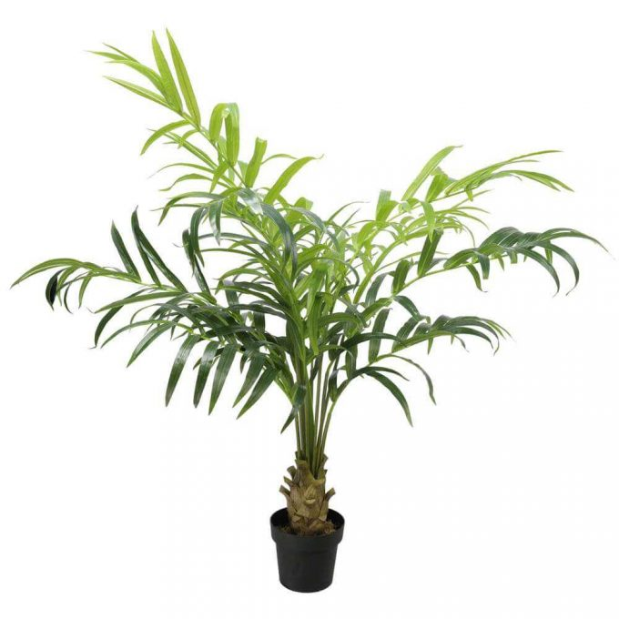 potted fake kentia palm tree