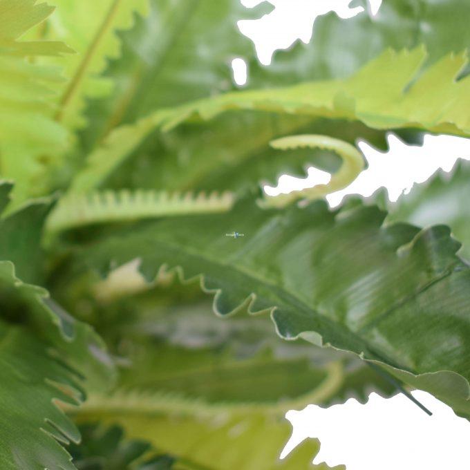 Birds Nest Fern Artificial 55cm