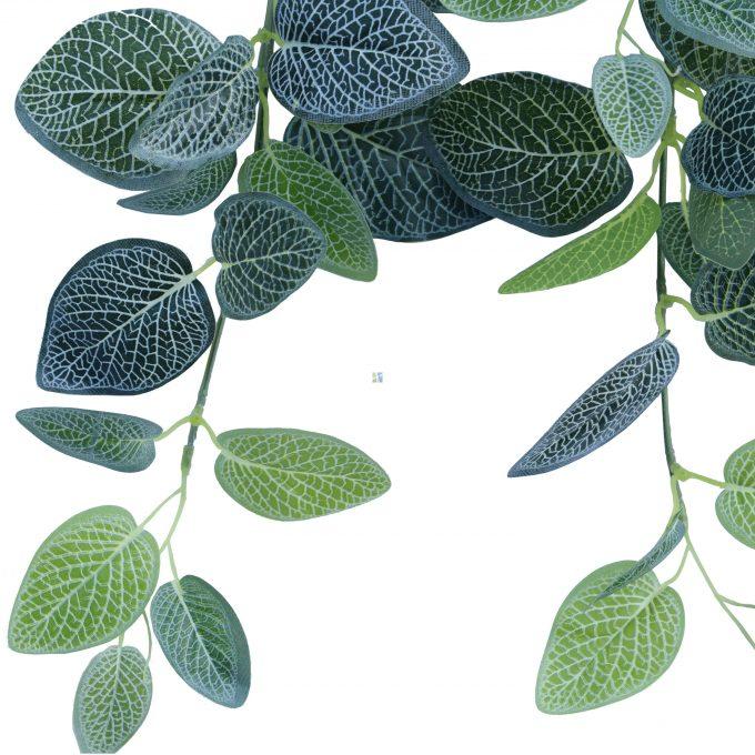 Artificial Fittonia Bush 80cm