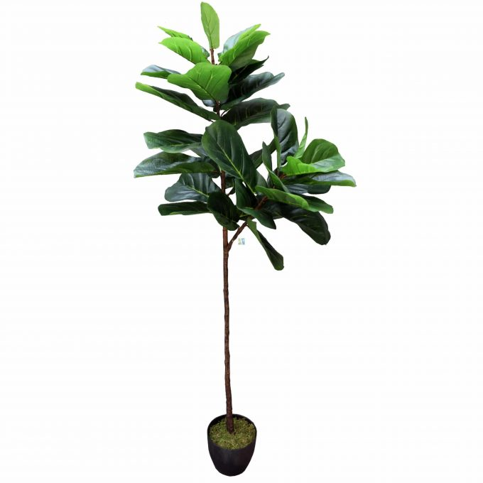 Artificial 170cm Fiddle Fig Trunk Leaves