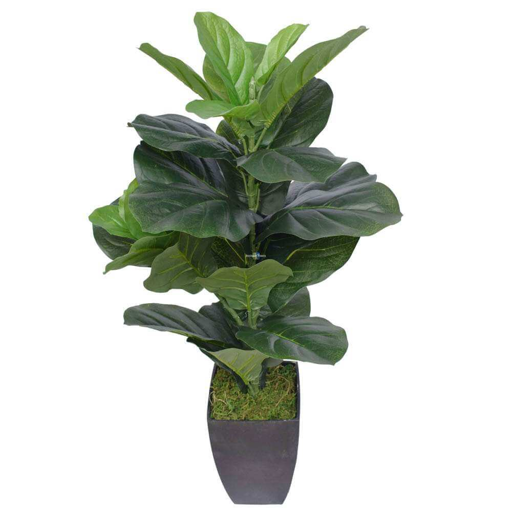 Potted artificial fiddle leaf fig 70cm