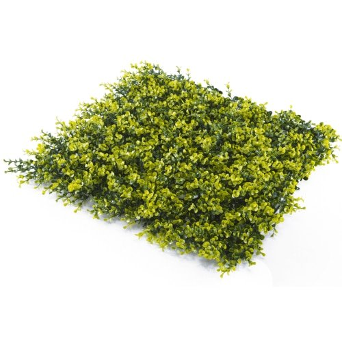 Super Clearance Yellow Buxus Mats Hedge / Panels UV Resistant 50cm x 50cm