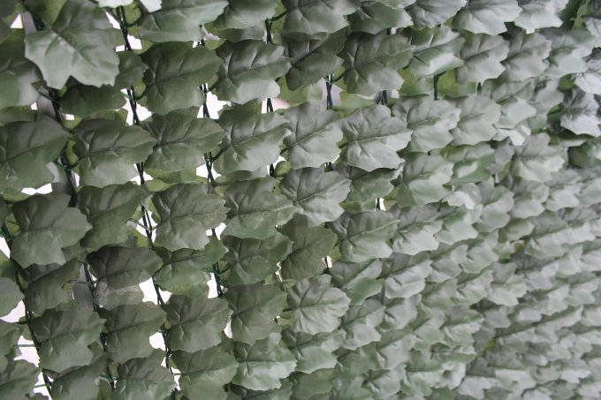 Close up of fake ivy leaves