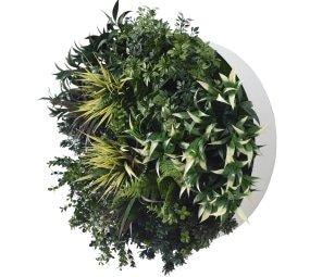 60cm fake plant disk white