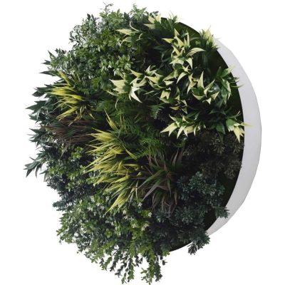 green wall disc decor