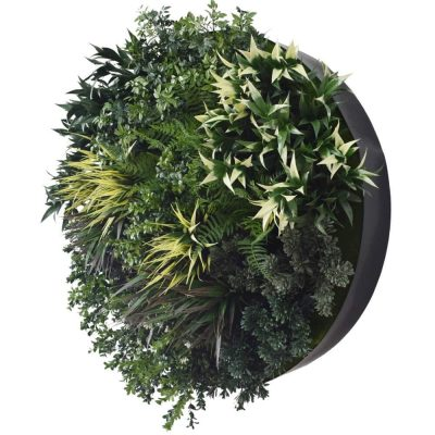 black outdoor uv green wall disc