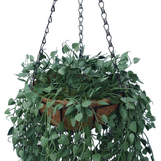 Fern Hanging Basket UV Resistant Details