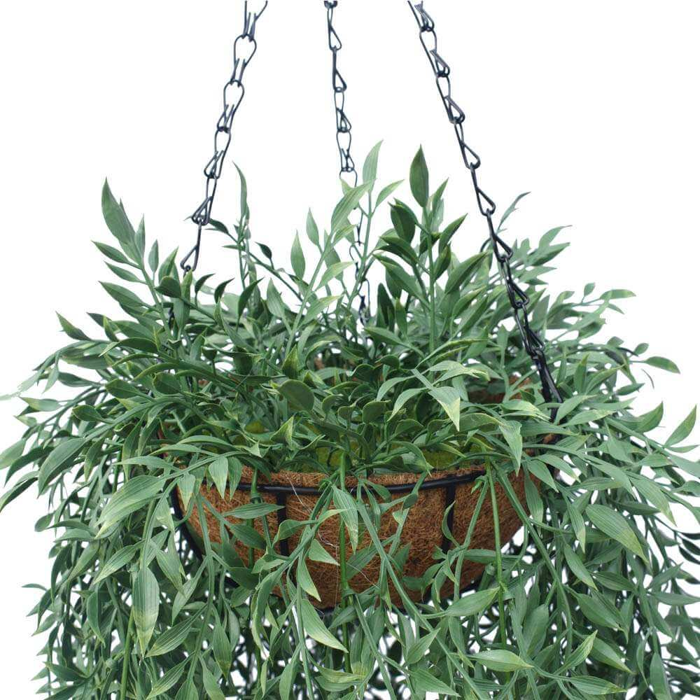 Artificial Hanging basket plant