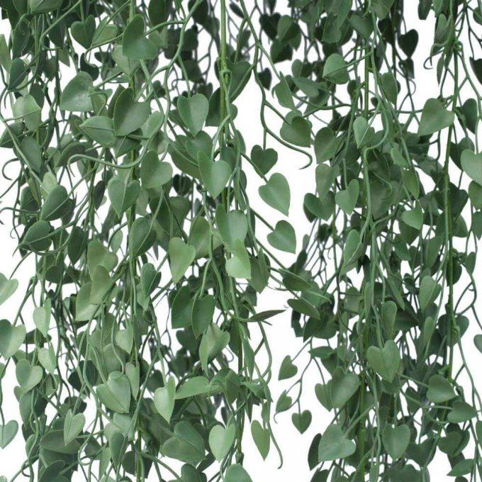 Fern Hanging Basket UV Resistant
