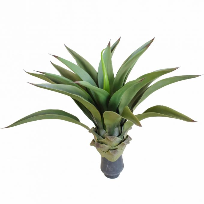 Artificial (fake) agave plant without a pot.