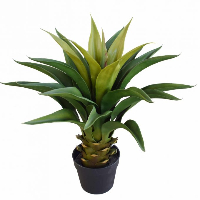 Artificial potted agave (faux plant)