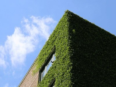 Green building environmental friendly options