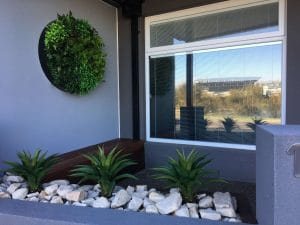 Artificial small plants and agaves potted up in someones house with fake plant wall disc