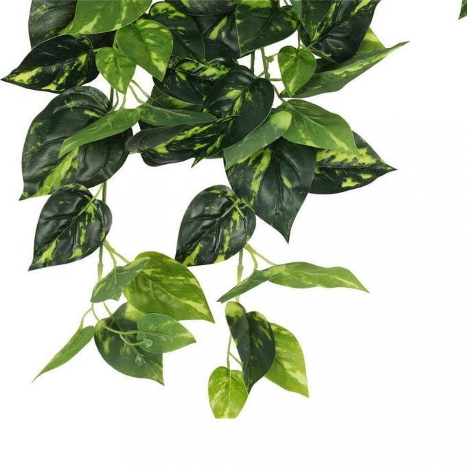 fake philodendron leaves