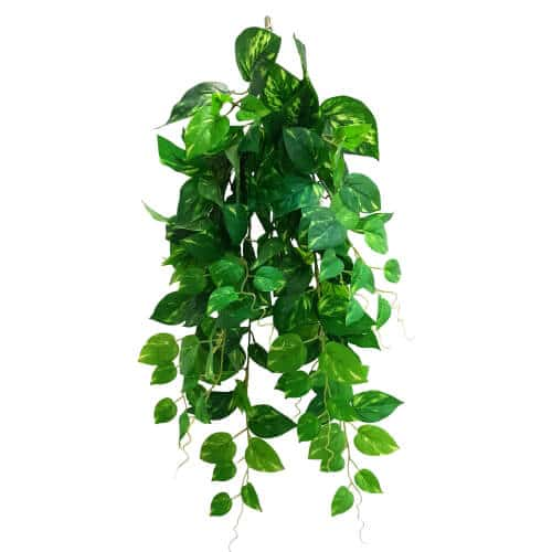 fake / artificial hanging philodendron bush plant