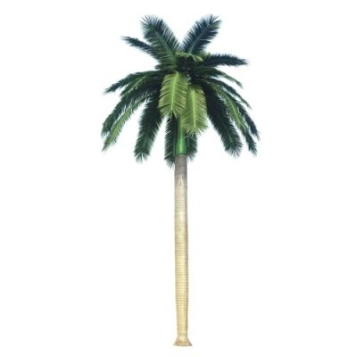 Fake / Artificial Royal Coconut Tree