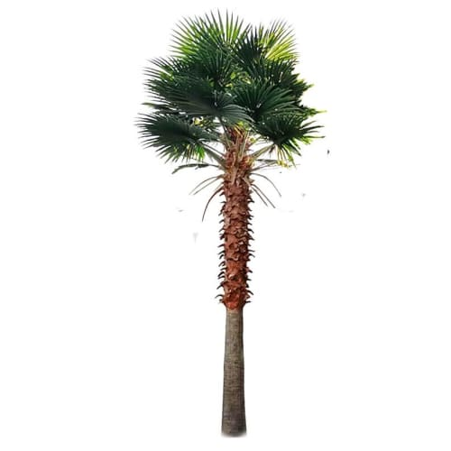 Artificial Fan Palm / Washington Palm Tree