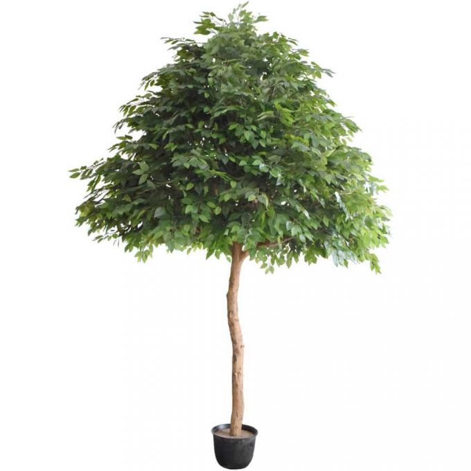 artificial ficus tree with quality leaves