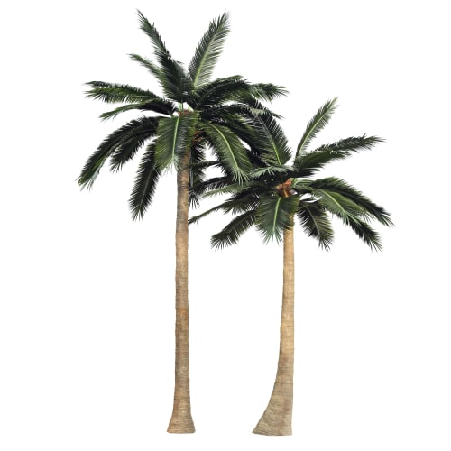 Large artificial coconut trees