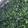 Privacy fences artificial hedges - installation on home