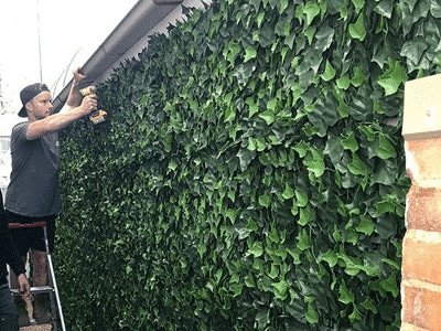 Regain privacy with artificial hedges - ivy wall installation at home - Artificial hedge fence