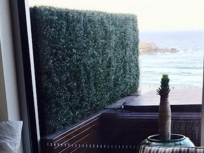 An artificial buxus hedge provides privacy on a beachside balcony