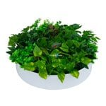 Artificial green wall disks - green wall disks to decorate your home