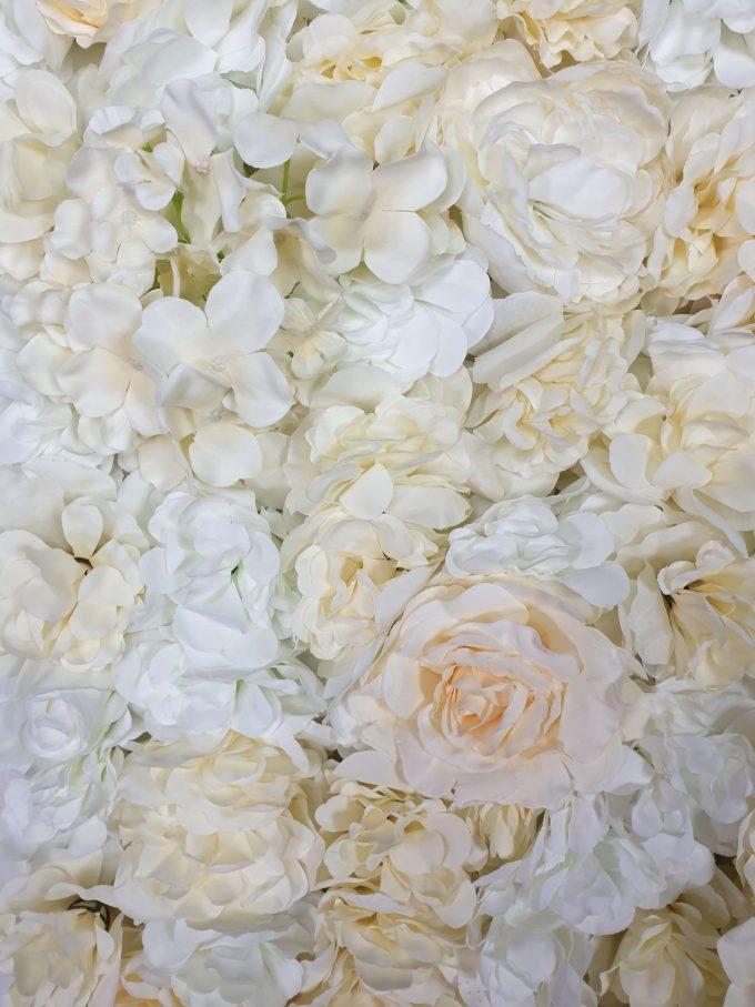 Cream Rose Flower Floral Wall 60cm x 40cm