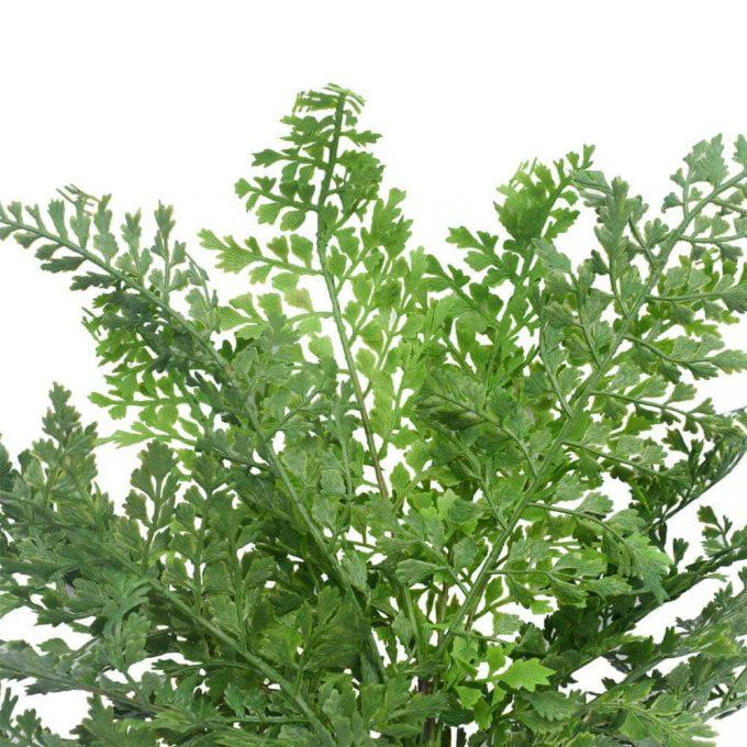 Foliage - Faux Maden Hair Fern 40cm