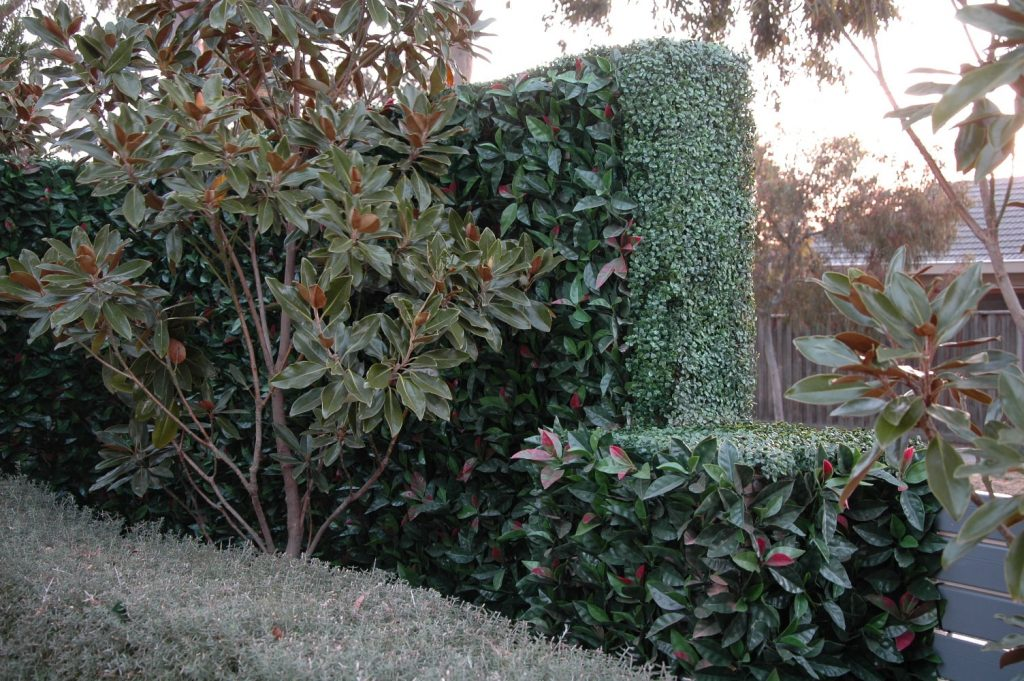 artificial photinia hedges installed onto a brick fence
